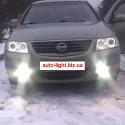 Ангельские глазки CCFL (angel eyes) Nissan Almera